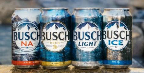 Alcohol Content of Busch Beer