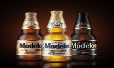 Modelo Alcohol Content And A Few Other Interesting Things About It