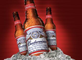 Budweiser Abv