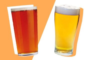 Lager vs Ale: All You Need To Know